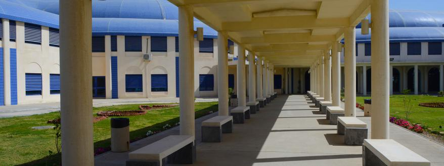 الأقسام Imam Abdulrahman Bin Faisal University